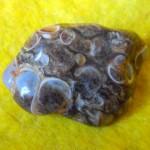 Черепаховый агат