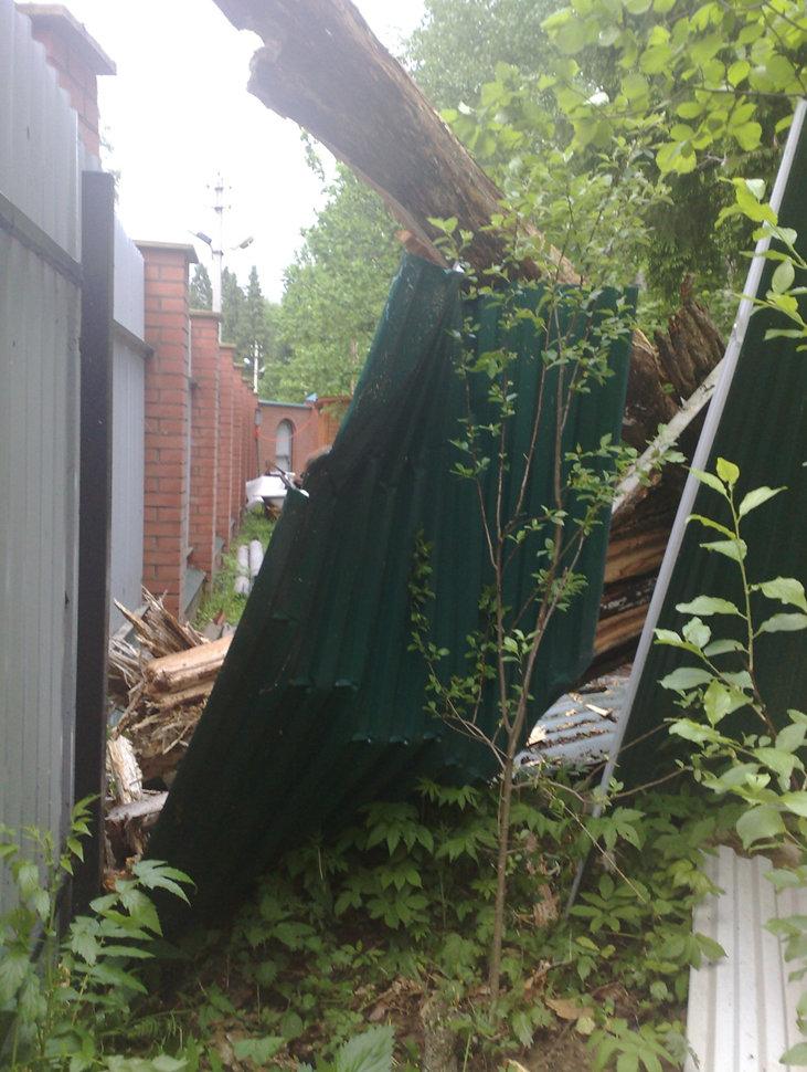 Повреждение от упавшего дерева
